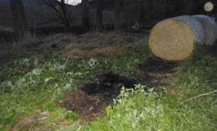 POL-HOL: Delligsen/Varrigsen:  Erneut Brand in der Feldmark von Varrigsen - Polizei bittet um Mithilfe